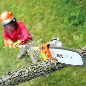 Man operating Stihl pole pruner